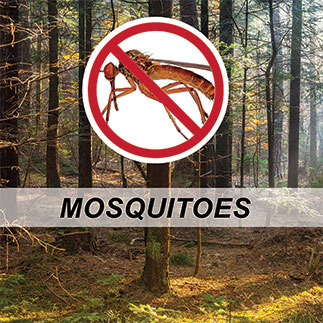 Insect control - mosquito